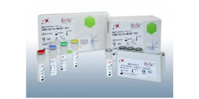 ELITe MGB - Molecular Diagnostics Kits - Oncohematology