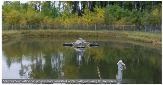 Cyanobacteria control in a small raw water pond - Case Study