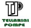 Tellarini Pumps