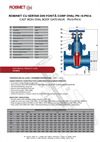 PN 10-16 Cast Iron Oval Body Gate Valve - Technical Specification