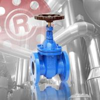 Class 150 Cast Iron Gate Valve with Non Rising Stem