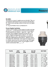 Pressure Regulators Brochure