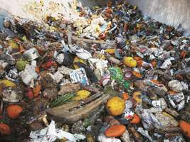 Waste Sorting - Organic Waste Sorting  - Waste and Recycling - Material Recycling