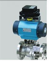 Pasco - Special Alloy Valves