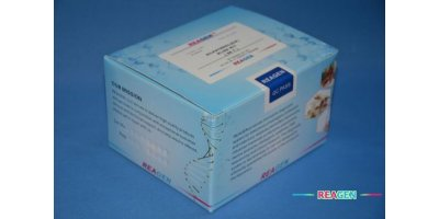 REAGEN - Model RNC95008 - DBP elisa kit