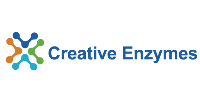Creative Enzymes