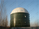 Model AMB Type - Biogas Storage Tank