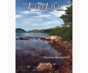 Shoreline Management