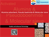 activated alumina adsorbent
