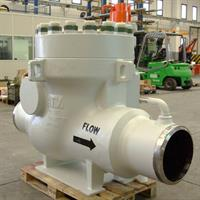 Subsea Swing Check Valve