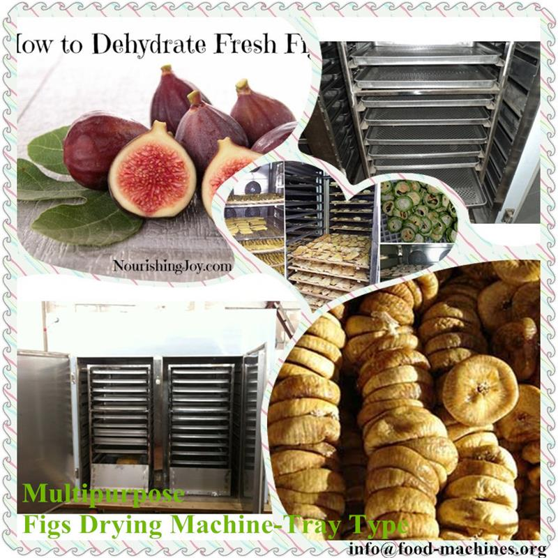 AZEUS - Multifunctional Figs Drying Machine-Tray Type, hot air circulation, electric