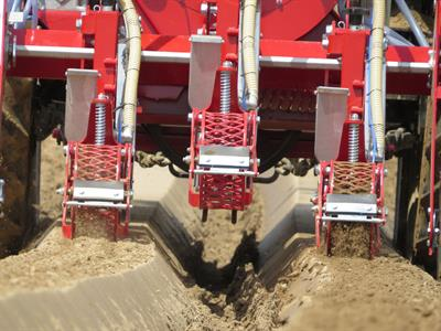 How to guarantee optimal vegetable growing - a precision seed drill