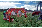 Victor - Self Propelled Full Row Harvester