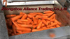 Fruit Cleaning & Peeling Machine,Carrot Cleaning Machine