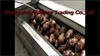 Taro Peeling Machine,Vegetable Washing and Peeling Machine Supplier