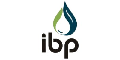 Institute Brazilian Petroleum (IBP)