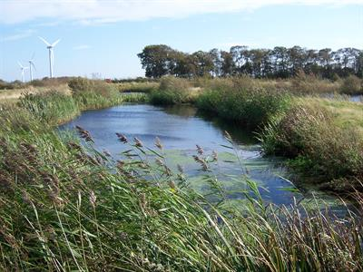 Wetlands and Protected Spaces