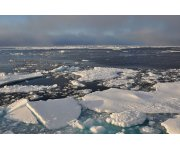 Arctic Polar Research - A Global Responsibility