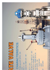 Model API 600 - Gate Valve Brochure