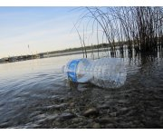Plastics can concentrate toxic pollutants, endangering marine ecosystems