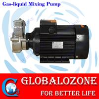 globalozone - Model 40GO-6SS - 6T/H Nano micro bubble generator gas-liquid mixing pump