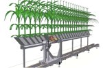 Tailor Made Plant Phenotyping Systems