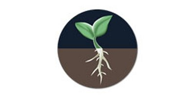 Direct Plant Applications - Agriculture - Crop Cultivation