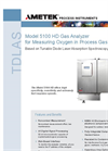 Model 5100 Oxygen in Process Gas Datasheet