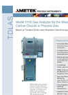 Model 5100 Carbon Dioxide Datasheet