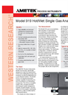 919 Hot/Wet Single Gas Analyzer - Datasheet