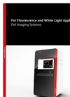 Gel Imaging Systems - For Fluorescence and White Light Applications - Brochure