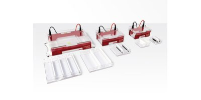 Compact - Model XS/S, M and L/XL - Straight Apparatus Family for Submerged Gel Electrophoresis
