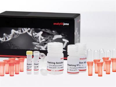 innuPREP - FFPE total RNA Kit