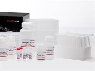 innuPREP - DNA/RNA Virus PLUS Kit - KFFLX
