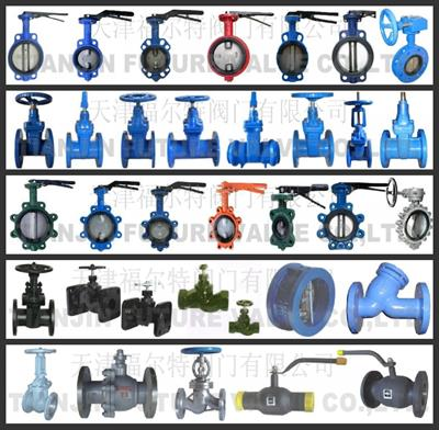 Tianjin Future Valve Co., Ltd.