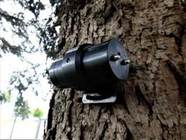 PiCUS - Tree Motion Sensors (TMS)