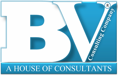 Bright Vision Consulting Services (BV Consulting Services)