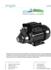 Model SP - Surface Electric Pumps Brochure