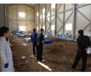 Biogas monitored in Korean animal graves