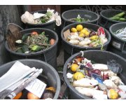 Going further with food: The rise of channelling food waste for biogas production
