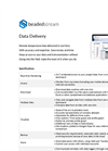 BeadedStream Data Delivery - Brochure