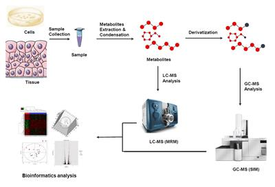 MtoZ Biolabs - Untargeted Metabolomics Services