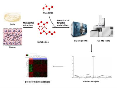 MtoZ Biolabs - targeted metabolomics service