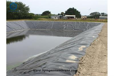 Cheap Pond Liner for Fish Farm Project in India