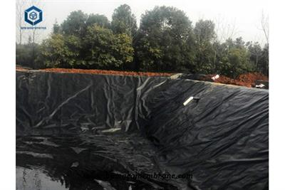 Polyurethane Pond Liner for Aquaculture Farm Projects in Philippines
