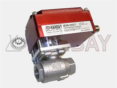 Hanbay - Model H280F-SS-IP-R-12 - Actuator