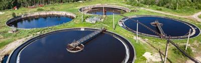 Gas Phase Reduction Technology for Sewage Sludge/Biomass Conversion
